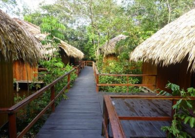 Amazon-Juma-Lodge-Cabins-with-Florest-View-Brazil-Ecotravel-1024x768