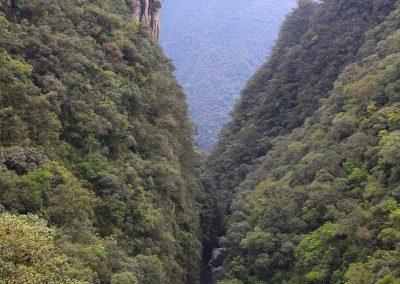 Serra-do-mar1