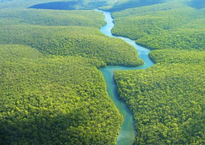 WP-Amazon-r.-aerial-view-through-rainforest-iStock_000001771644_Medium